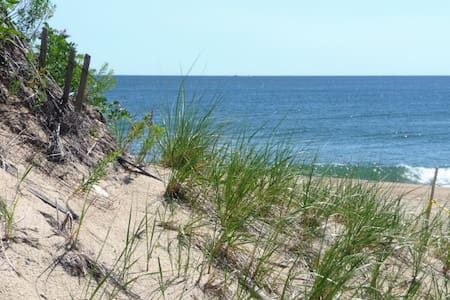 Plum Island Gem!  Private Coastal Home - Newbury