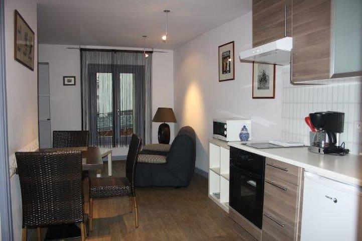 location semaine t2 meubl centre appartamenti serviti in affitto a aix les bains rodano alpi. Black Bedroom Furniture Sets. Home Design Ideas