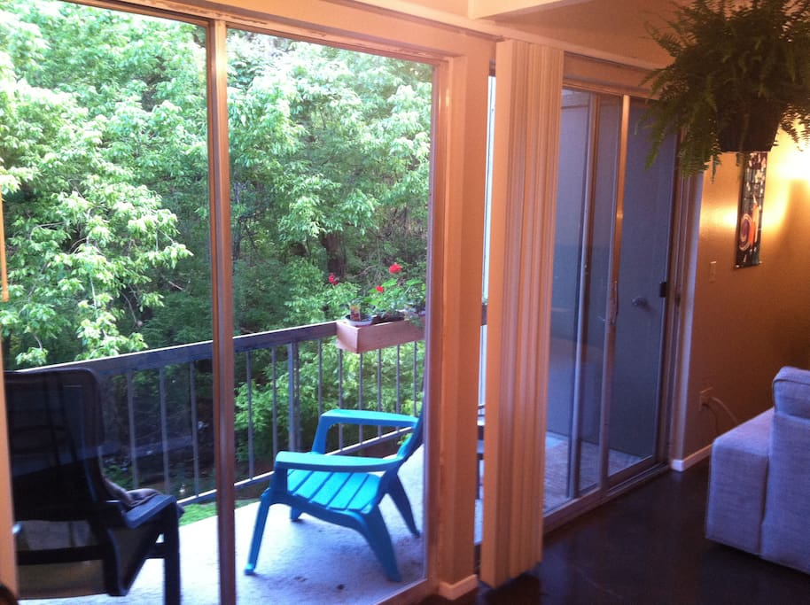 Balcony overlooks Barton Creek. Very relaxing in and calm in the evenings.