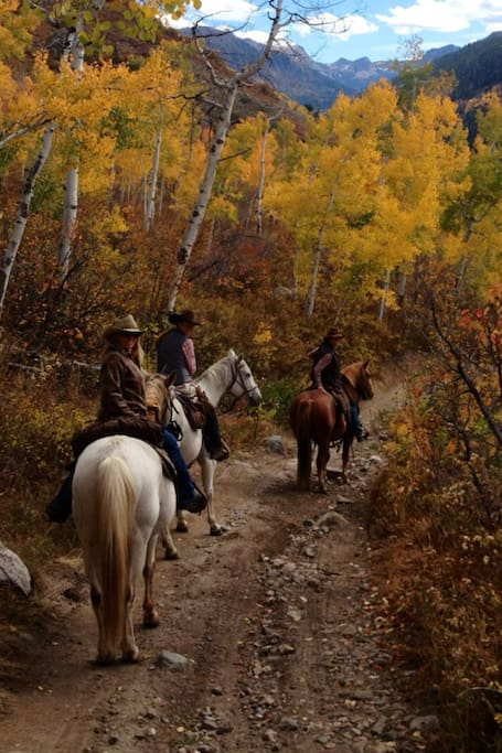 A fall horseback ride (select dates, reserve in advance)