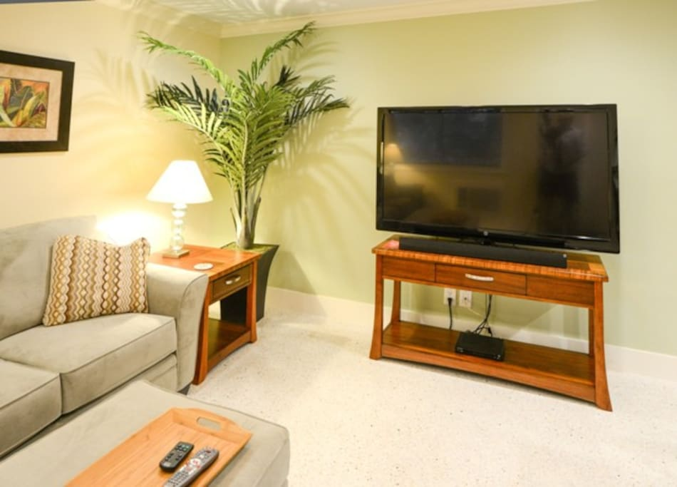 """60"""" TV with Comcast Cable"""