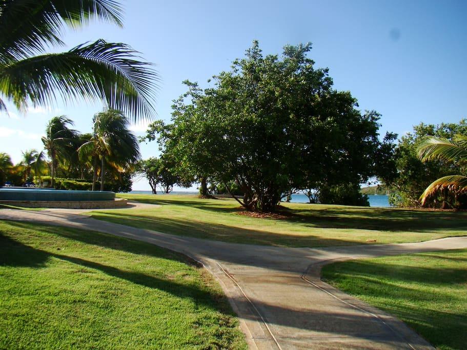 Beautiful property walk