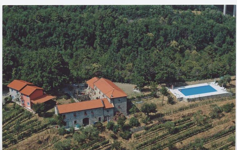 Magica Terra di Lunigiana, Cipresso - Pontremoli - Apartment