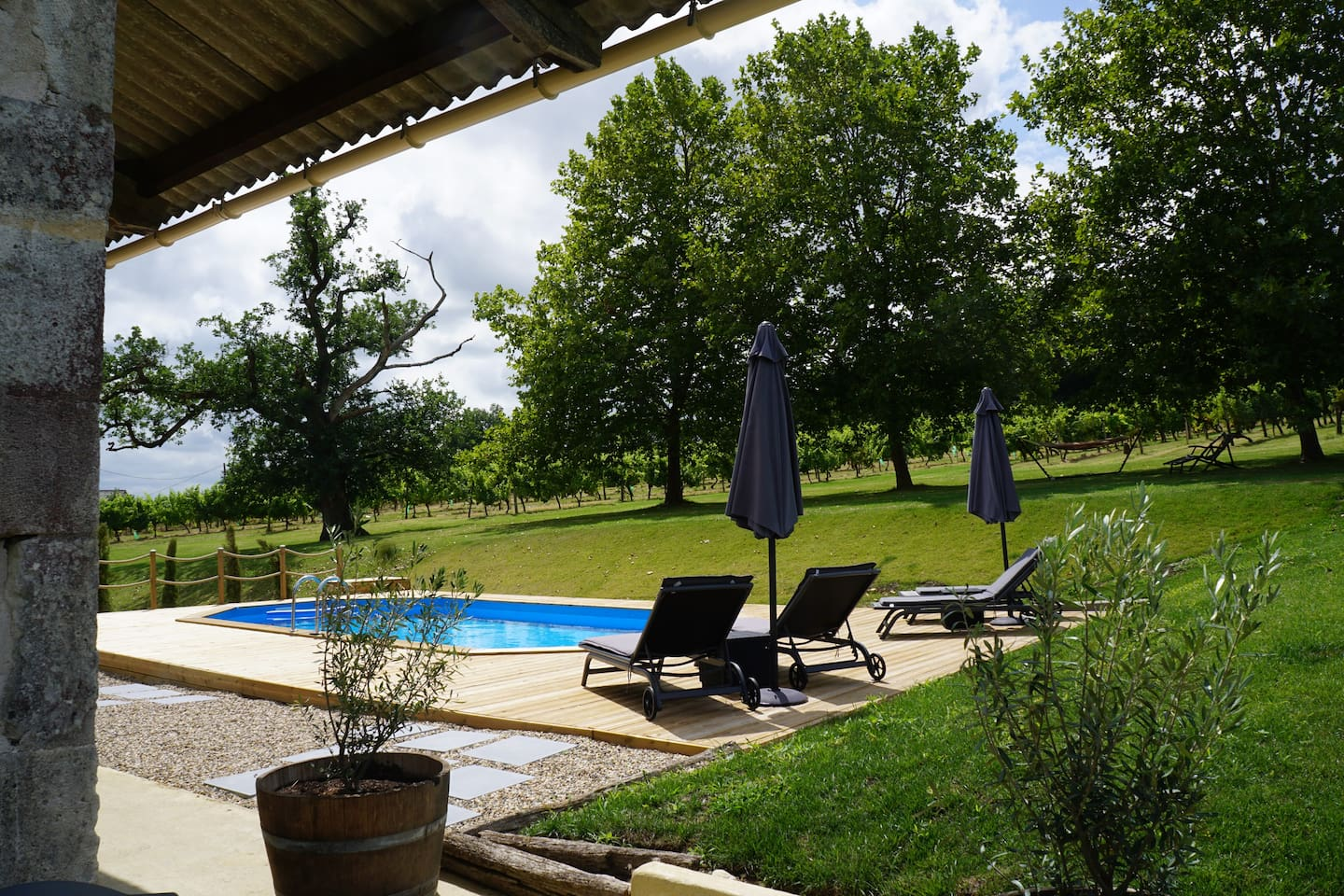 The pool is set in front of a backdrop of vines