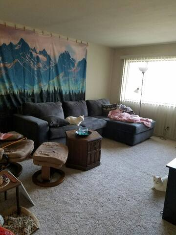Excellent Guest Room in Private Apartment - Ballwin