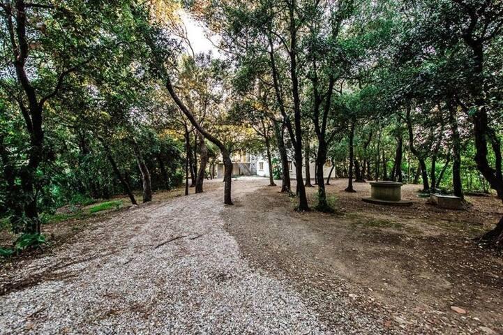 Villa Scogliera-direct access to the private beach - 09e33b51