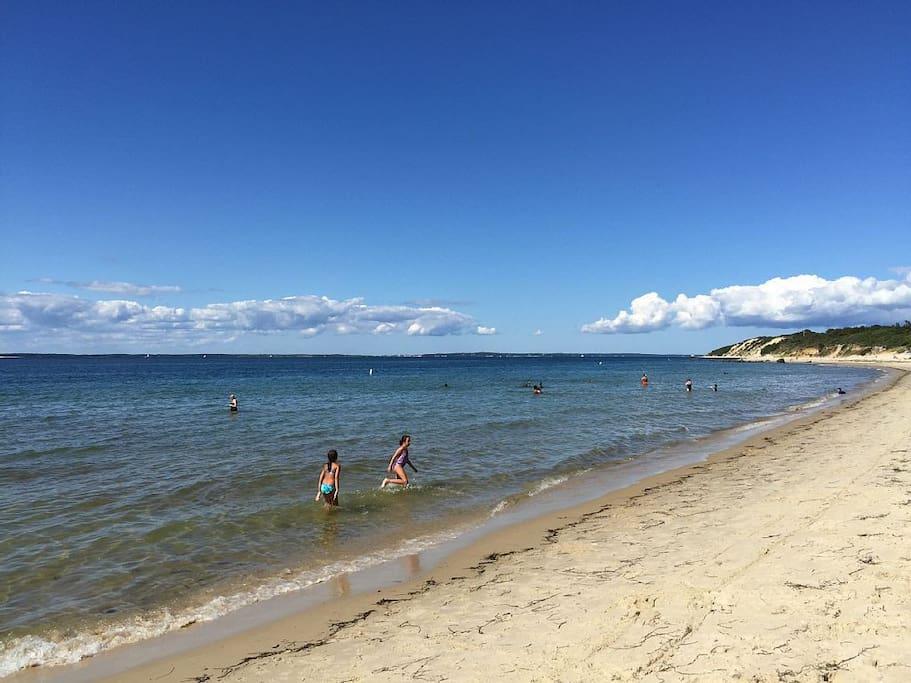 Lambert's Cove Beach has calm ocean swimming.