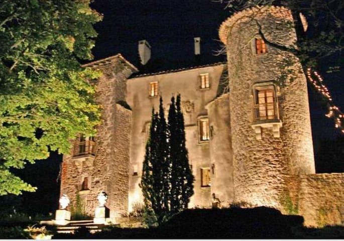 Le Château du Cros - Le Cros - Kasteel