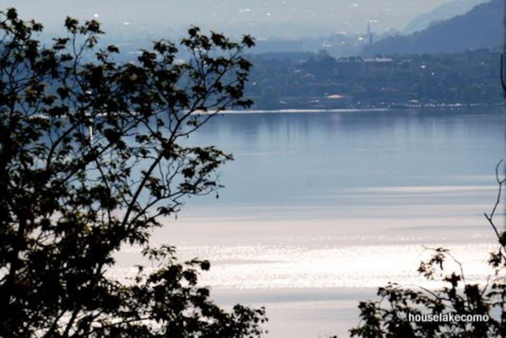 The lake view