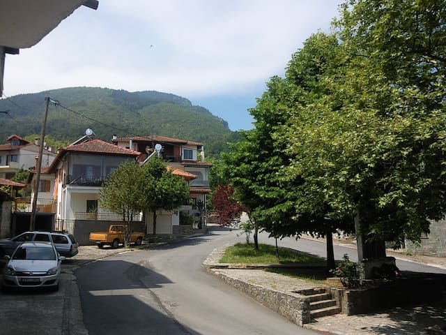 Apartment near Olympus mountain - Litochoro - Leilighet