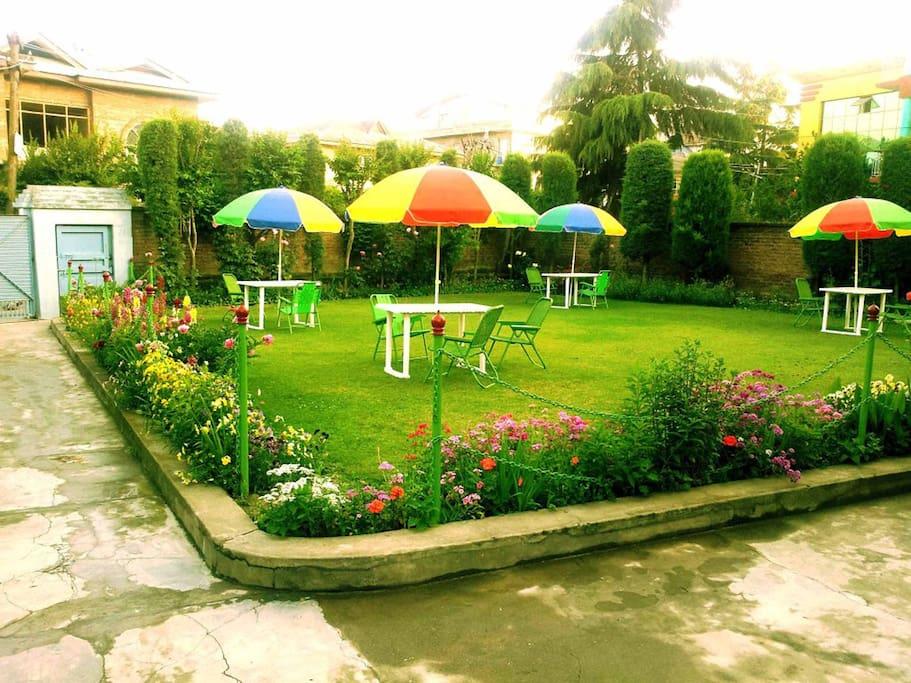Lawn / Garden