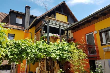 Holiday home in Hanau near Frankfurt - Hanau