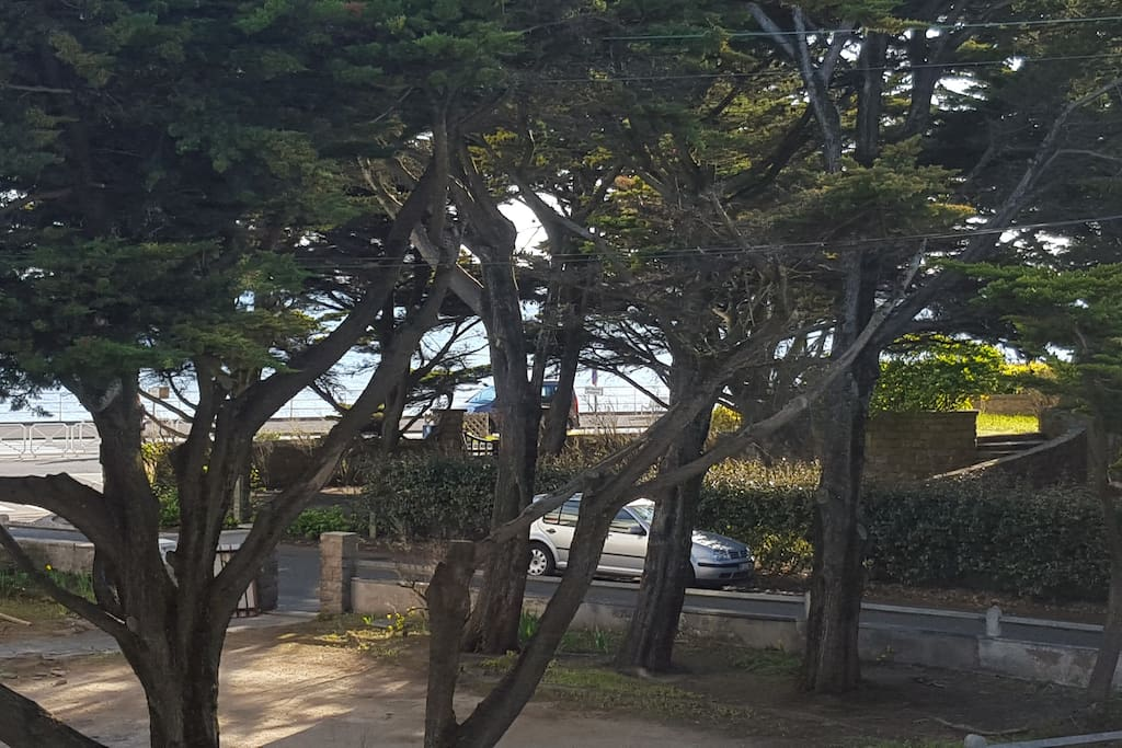 La vue de la terrasse