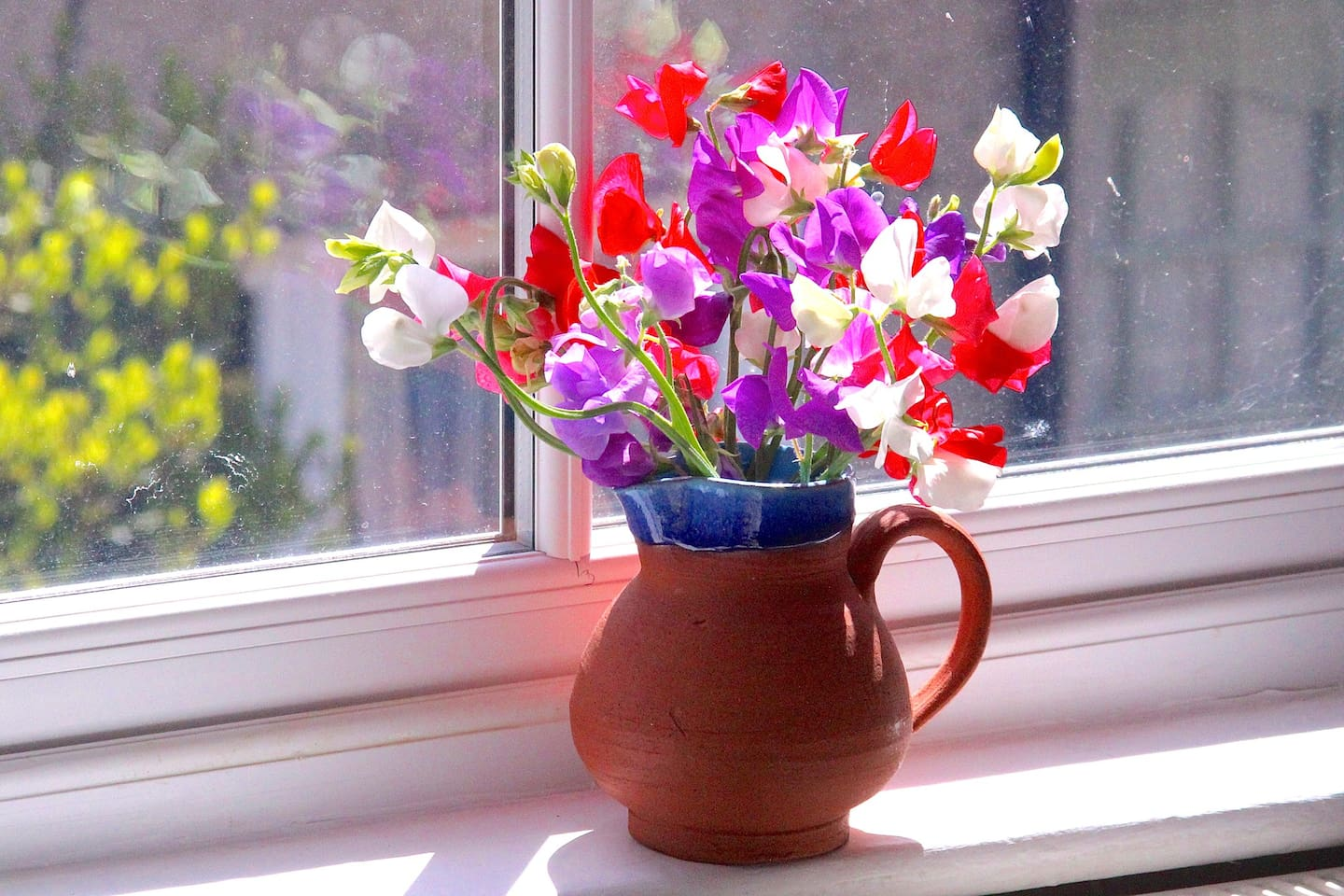 Summer sweet peas - from my allotment garden - there may be some when you're staying.