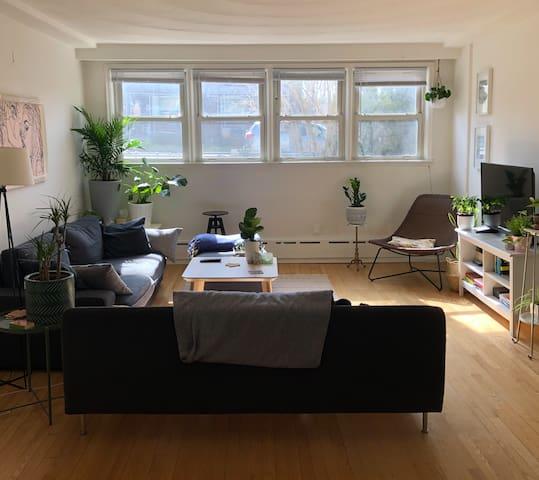 Spacious bedroom in the heart of Dufferin Grove