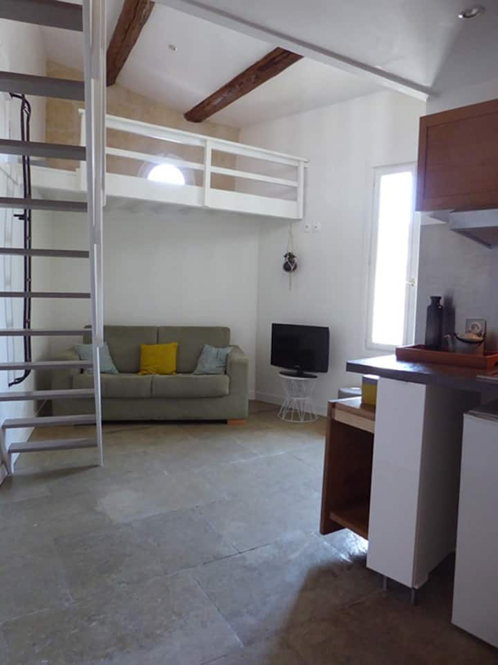 Appartement ambiance loft