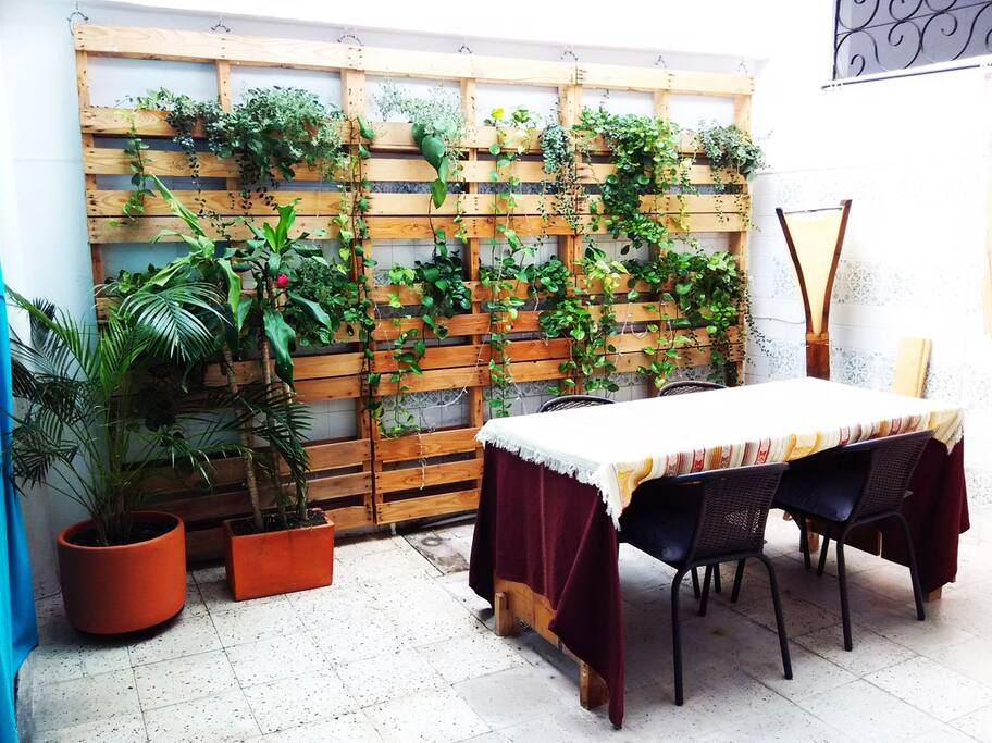 Comedor con jardín vertical