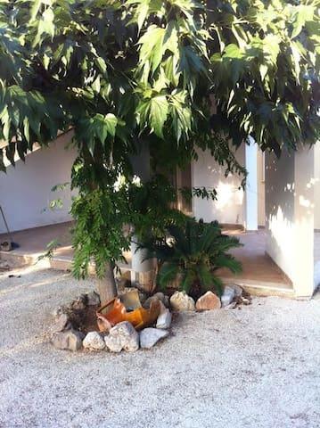 puglia villa con giardino nel mare del salento - Monacizzo-librari-truglione - Villa