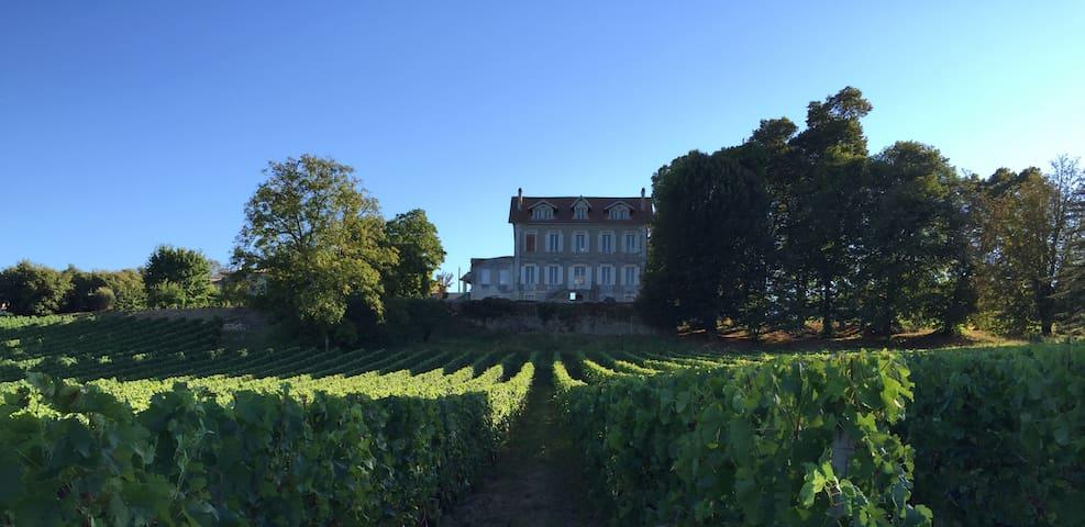 Parenthèse au coeur des vignobles du Bordelais - Fronsac