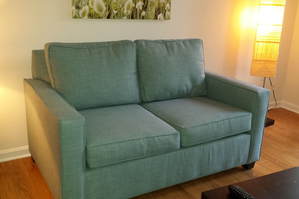 We have added a brand new couch with a pull-out mattress!