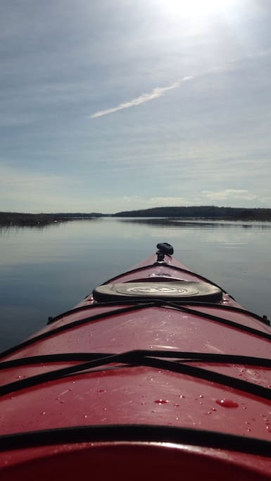 Explore Scott Bay in a Kayak!