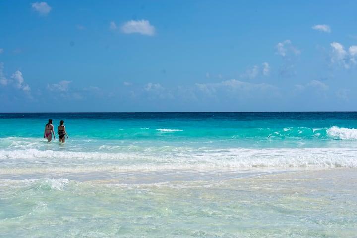 *Beach front Villa in Cancun hotel zone