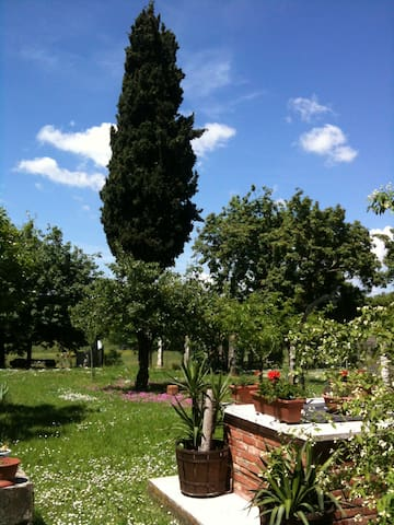 accogliente appto campagna toscana - Lucignano - Flat