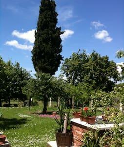 accogliente appto campagna toscana - Lucignano