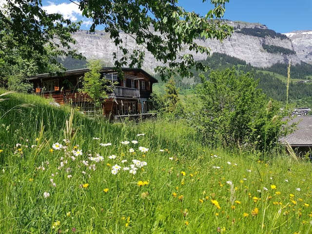 Charmantes Chalet in Flims