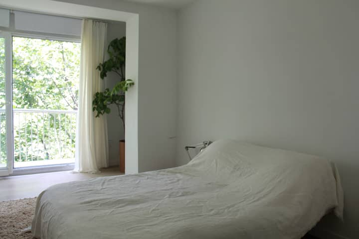 Minimalistic White  Architects apartment