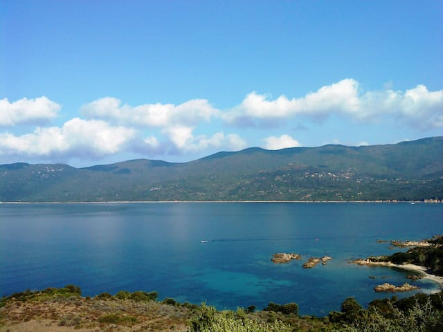 Face à la mer - Serra-di-Ferro - Selveierleilighet