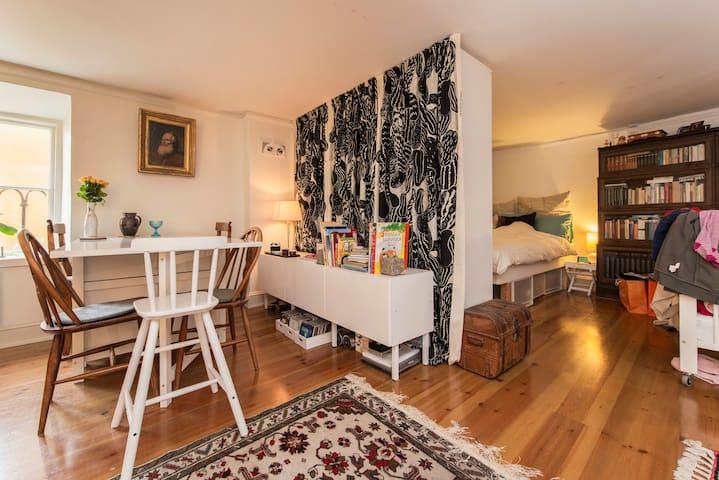 Spacious studio flat in Gamla stan - Stockholm - Apartemen