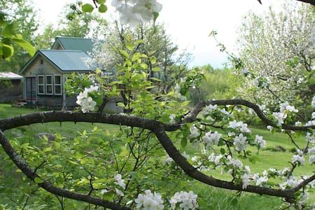 Charm, mountain view, solar, piano, & yoga studio! - Bethel - Haus