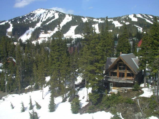 Cascadia Lodge Chalet - Comox-Strathcona C - Rumah