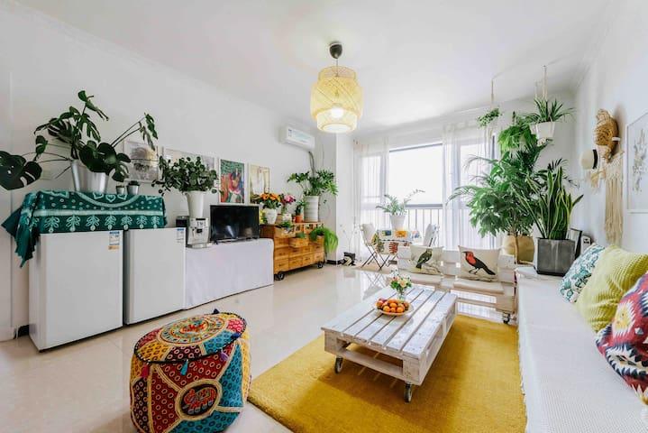 【家有植物园】近火车站/钟楼/回民街/南门城墙/大明宫遗址公园 分享你一个有色彩有温度的家