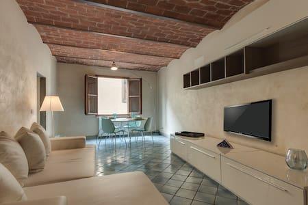 Romantic apartment in Oltrarno