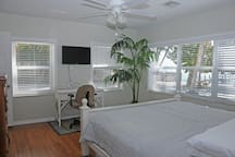 Master Bedroom alternate view to tropical paradise