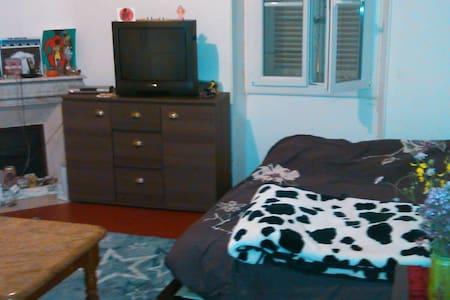 un lit dans l`appart de 35 m,plein centre de ville - Apartment