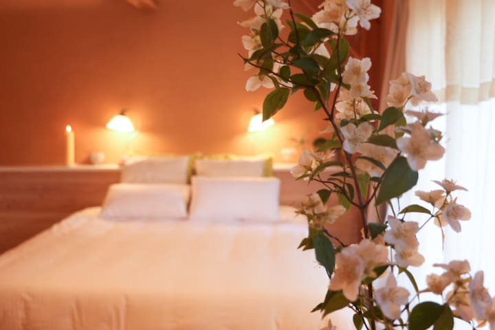 Absolut oiseaux - Parisot - Bed & Breakfast