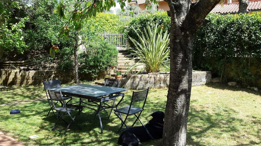 Toscana bilocale mare e piscina - Montescudaio  - Apartamento