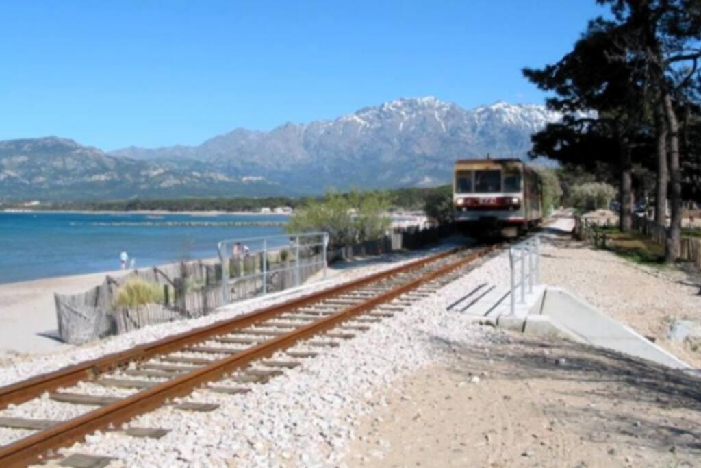 Il trenino che vi permetterà di vedere e provare ogni spiaggia della Baia di Calvi... da Provare!