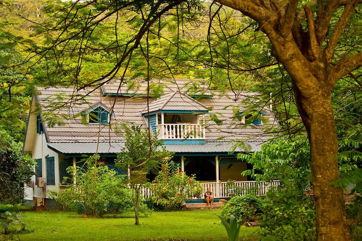 The Blue House for Dog Lovers - La Digue