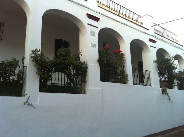 Villa Irene: ideal para grupos