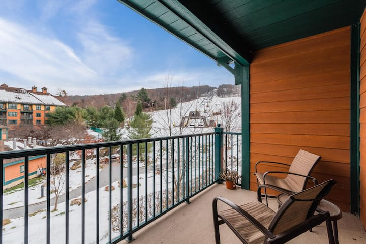 Pine Grove - #46 - Mountain Front-Skiing-Hiking-Wineries-WiFi-50 miles from NYC