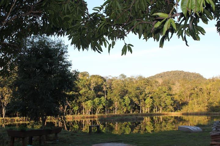 Lago (1)