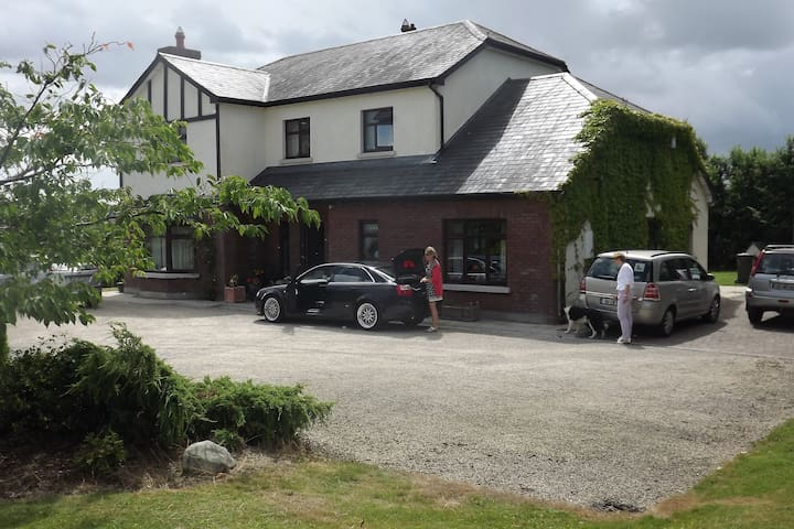 Tudor Lodge B&B - carlow - Penzion (B&B)