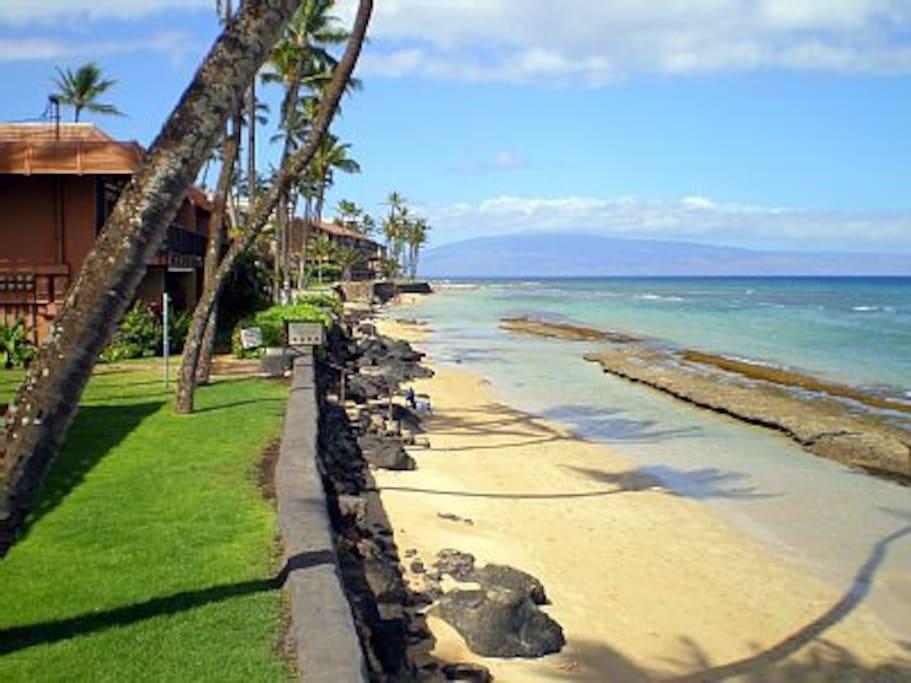 WOW beachfront condo.