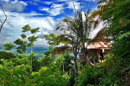 Little shanty, ENORMOUS view! - Añasco - กระท่อม