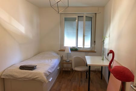 Private room near center of Zurich and Airport