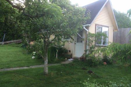 Bayside Garden Cottage - Bayside